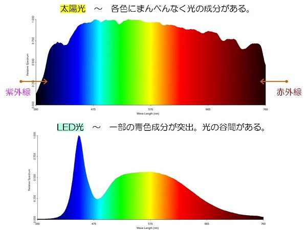 太陽光とLED光